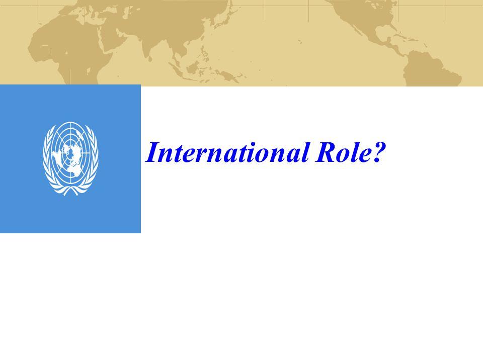 International Role