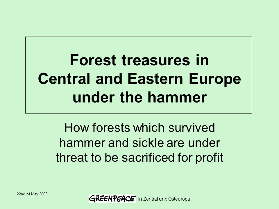 22nd of May 2003 In Zentral und Osteuropa Forest treasures in Central and Eastern Europe under the hammer How forests which survived hammer and sickle are under threat to be sacrificed for profit