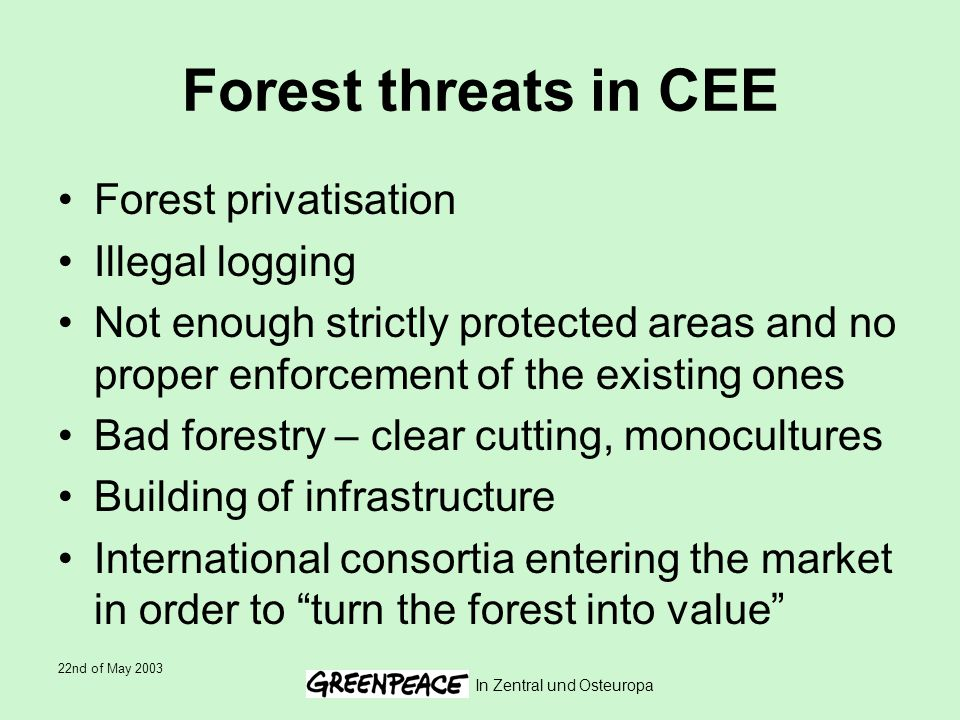 22nd of May 2003 In Zentral und Osteuropa Forest threats in CEE Forest privatisation Illegal logging Not enough strictly protected areas and no proper enforcement of the existing ones Bad forestry – clear cutting, monocultures Building of infrastructure International consortia entering the market in order to turn the forest into value