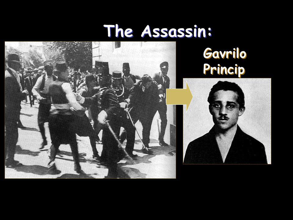 The Assassin: The Assassin: Gavrilo Princip Gavrilo Princip