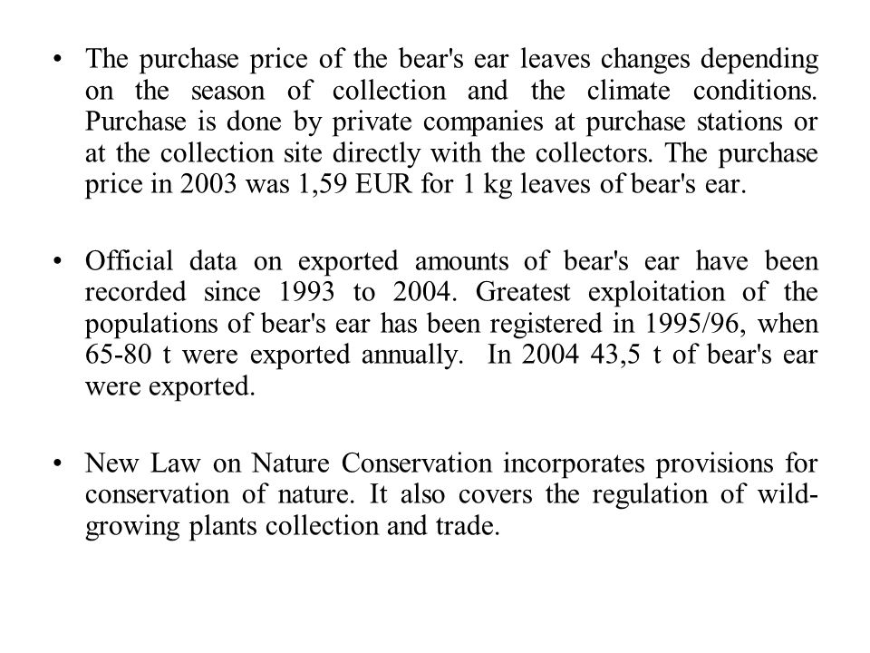 The purchase price of the bear s ear leaves changes depending on the season of collection and the climate conditions.
