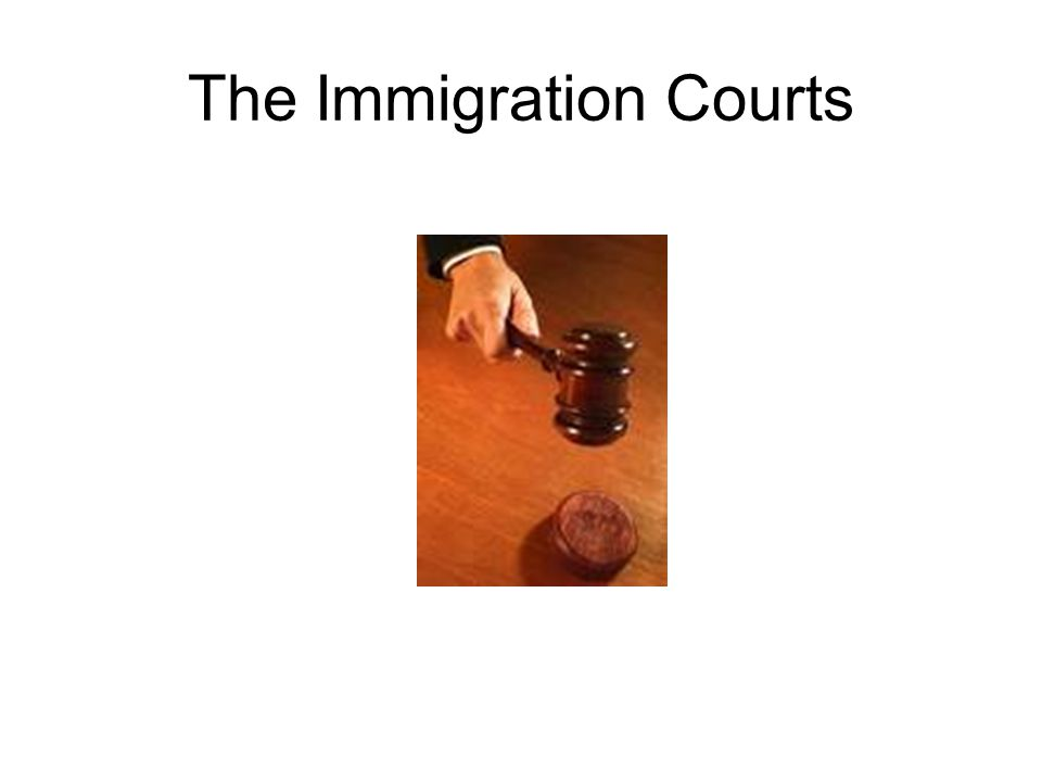 The Immigration Courts