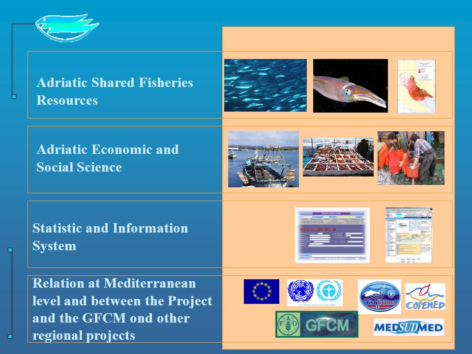 Adriatic Shared Fisheries Resources Adriatic Economic and Social Science Statistic and Information System Relation at Mediterranean level and between the Project and the GFCM ond other regional projects