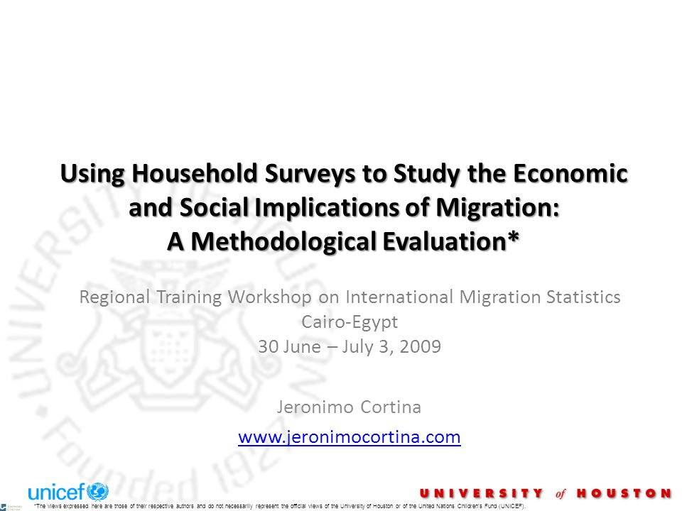 Using Household Surveys to Study the Economic and Social Implications of Migration: A Methodological Evaluation* Regional Training Workshop on Interna