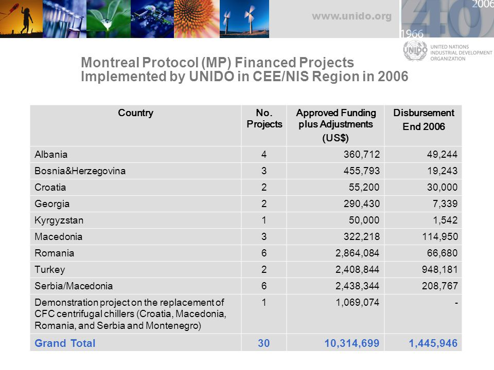www.unido.org CountryNo. Projects Approved Funding plus Adjustments (US$) Disbursement End 2006 Albania4360,71249,244 Bosnia&Herzegovina3455,79319,243