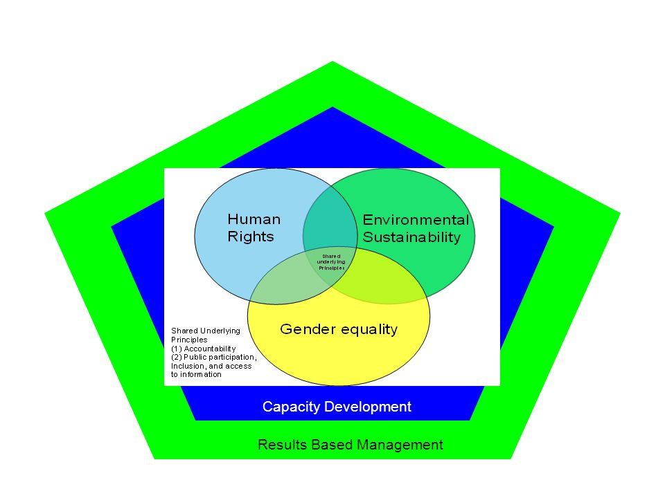 Results Based Management Capacity Development