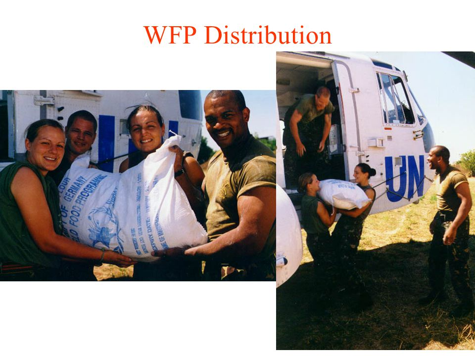 WFP Distribution