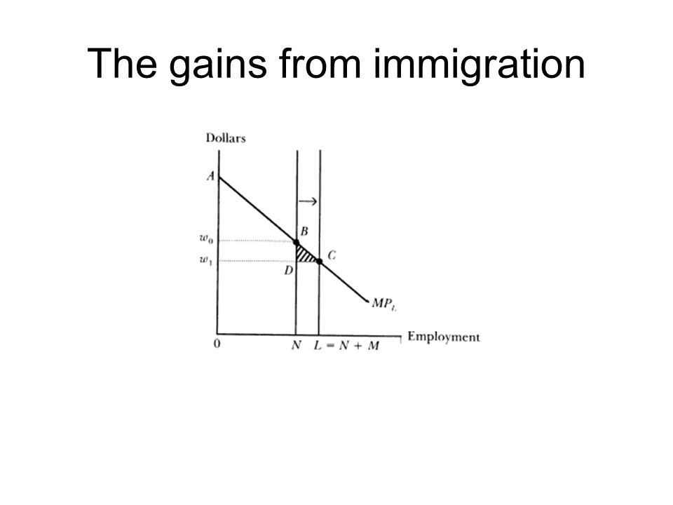 The gains from immigration