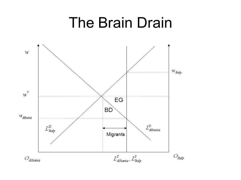 The Brain Drain Migrants BD EG