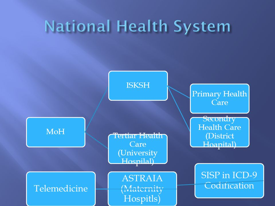 MoH ISKSH Primary Health Care Secondry Health Care (District Hoapital) Tertiar Health Care (University Hospilal) SISP in ICD-9 Codification ASTRAIA (Maternity Hospitls) Telemedicine