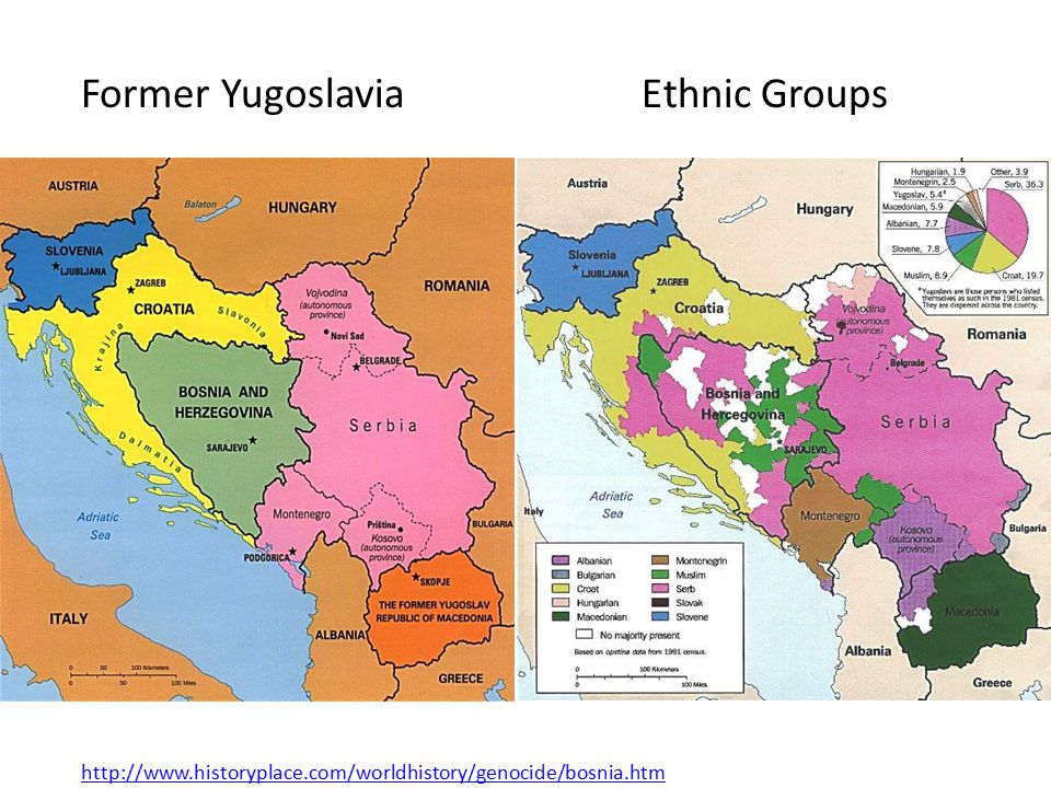 Former YugoslaviaEthnic Groups http://www.historyplace.com/worldhistory/genocide/bosnia.htm