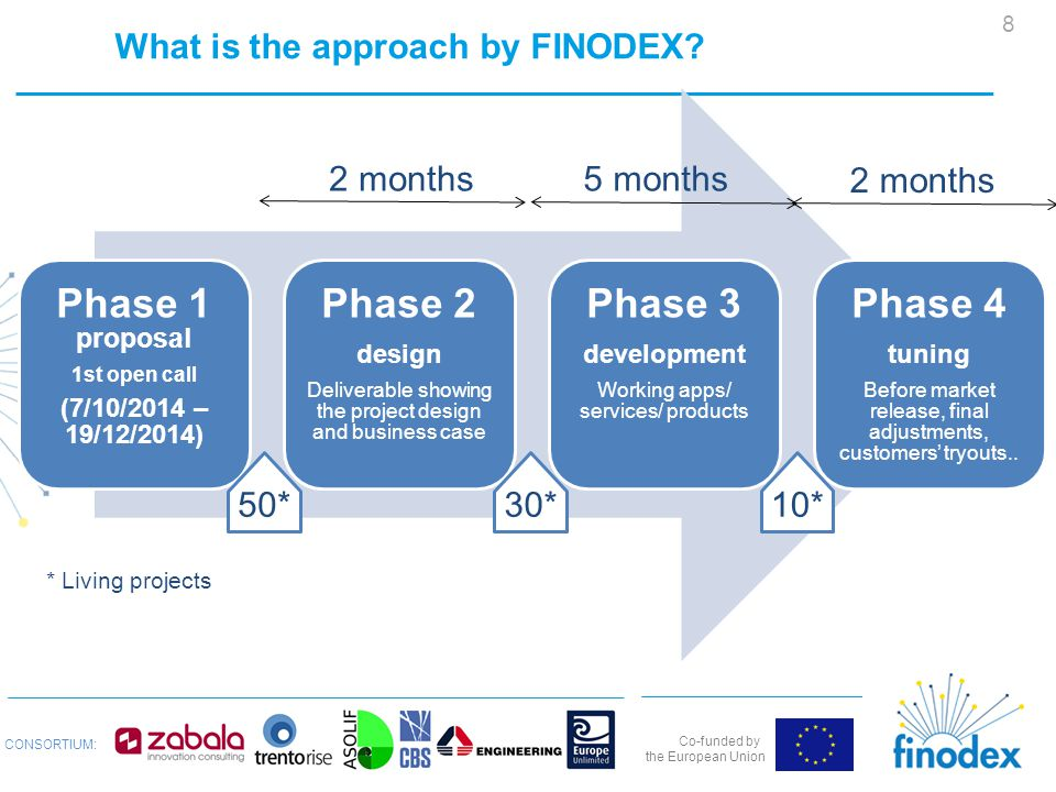 Co-funded by the European Union CONSORTIUM: What is the approach by FINODEX.