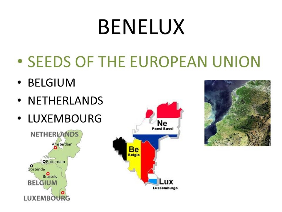BENELUX SEEDS OF THE EUROPEAN UNION BELGIUM NETHERLANDS LUXEMBOURG