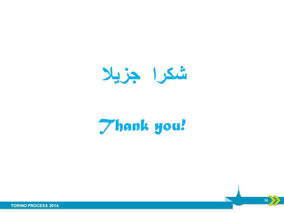 TORINO PROCESS 2014 شكرا جزيلا Thank you! 14