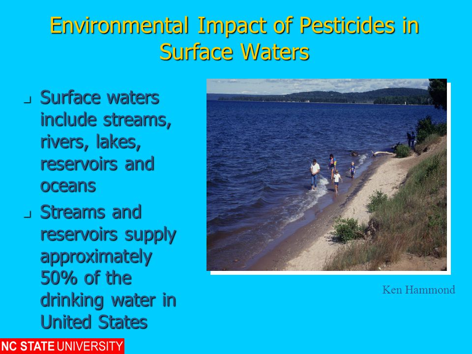 Environmental Impact of Pesticides in Surface Waters Surface waters include streams, rivers, lakes, reservoirs and oceans Surface waters include streams, rivers, lakes, reservoirs and oceans Streams and reservoirs supply approximately 50% of the drinking water in United States Streams and reservoirs supply approximately 50% of the drinking water in United States Ken Hammond