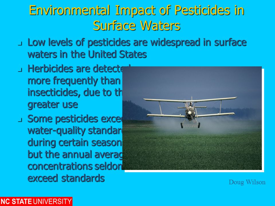Environmental Impact of Pesticides in Surface Waters Low levels of pesticides are widespread in surface waters in the United States Low levels of pesticides are widespread in surface waters in the United States Herbicides are detected more frequently than insecticides, due to their greater use Herbicides are detected more frequently than insecticides, due to their greater use Some pesticides exceed water-quality standards during certain seasons, but the annual average concentrations seldom exceed standards Some pesticides exceed water-quality standards during certain seasons, but the annual average concentrations seldom exceed standards Doug Wilson