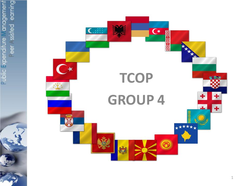 OUTLINE Countries present: Albania, Bulgaria, Macedonia, Romania, Turkey, Belarus, Indonesia, Kyrgyzstan, Moldova, Tajikistan, Russian Federation, France, (EDB, SECO, World Bank) What useful lessons can be applied in your countries from the Russia experience.