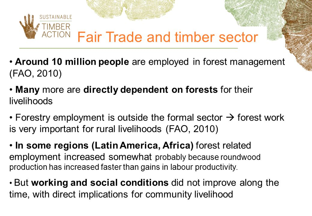 Fair Trade and timber sector Around 10 million people are employed in forest management (FAO, 2010) Many more are directly dependent on forests for their livelihoods Forestry employment is outside the formal sector  forest work is very important for rural livelihoods (FAO, 2010) In some regions (Latin America, Africa) forest related employment increased somewhat probably because roundwood production has increased faster than gains in labour productivity.