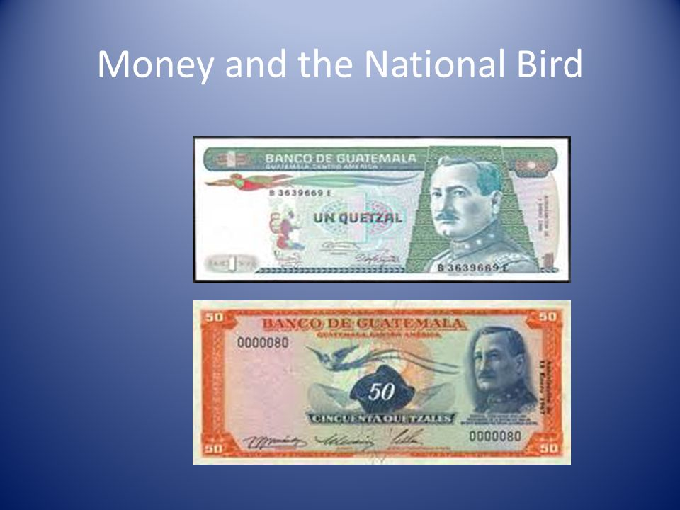 Money and the National Bird