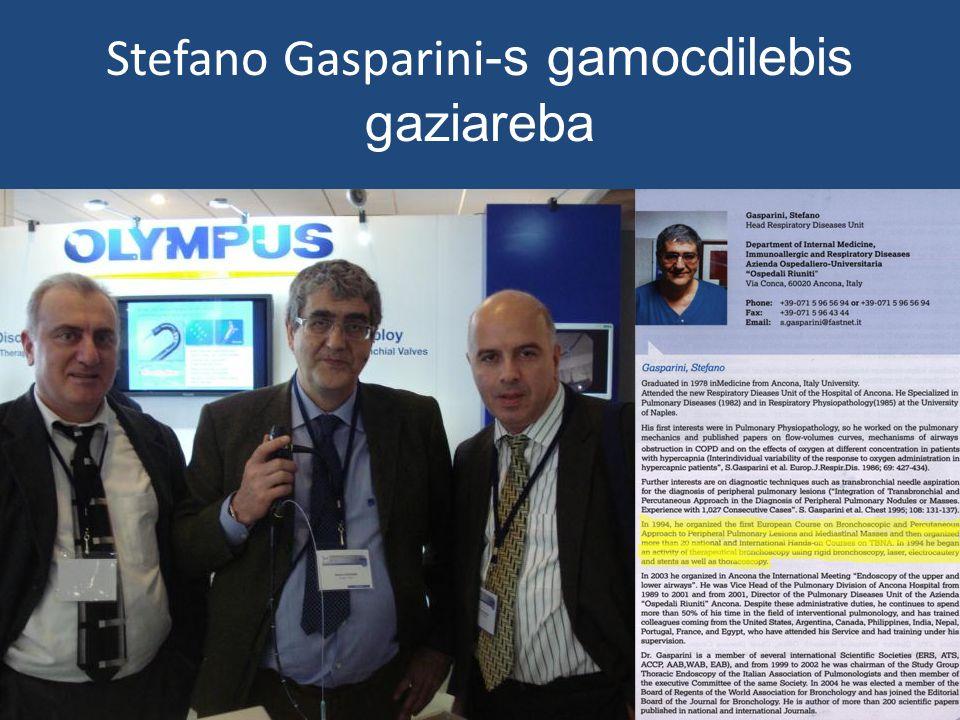 Stefano Gasparini -s gamocdilebis gaziareba