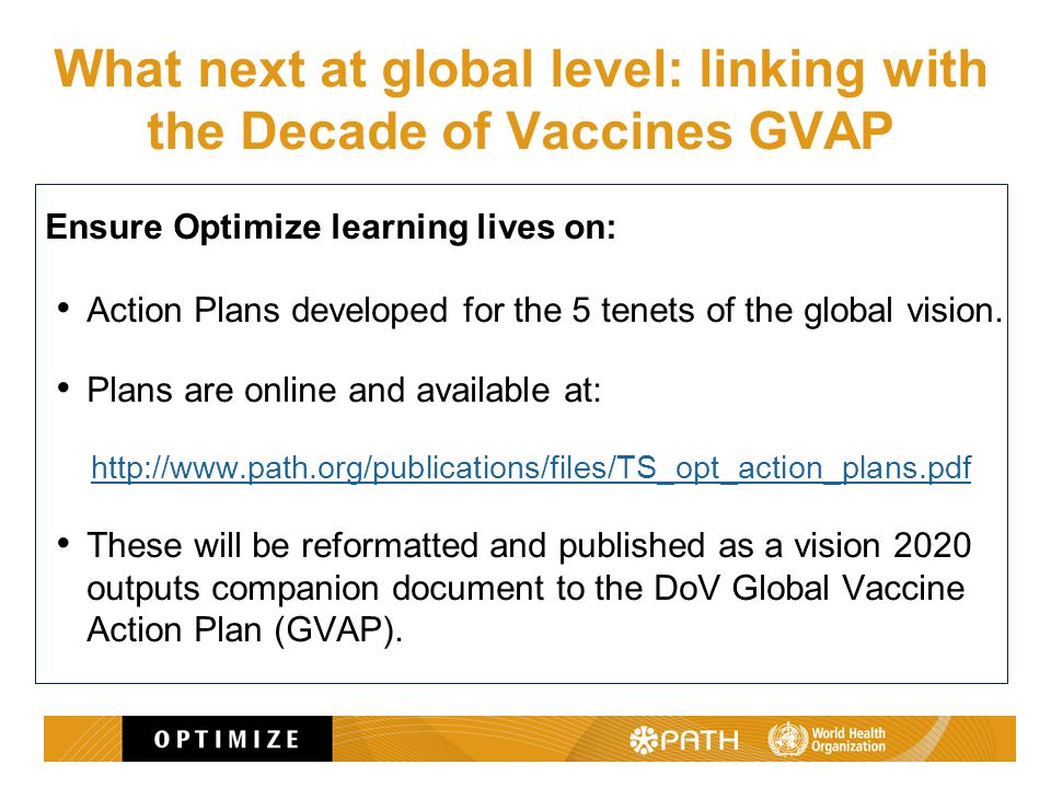 What next at global level: linking with the Decade of Vaccines GVAP Ensure Optimize learning lives on: Action Plans developed for the 5 tenets of the global vision.