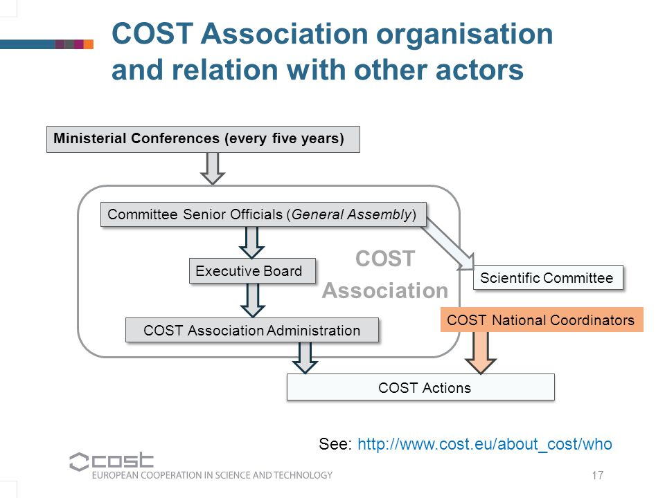 COST Association organisation and relation with other actors Executive Board Scientific Committee COST Actions 17 COST National Coordinators Committee Senior Officials (General Assembly) See: http://www.cost.eu/about_cost/who Ministerial Conferences (every five years) COST Association Administration COST Association