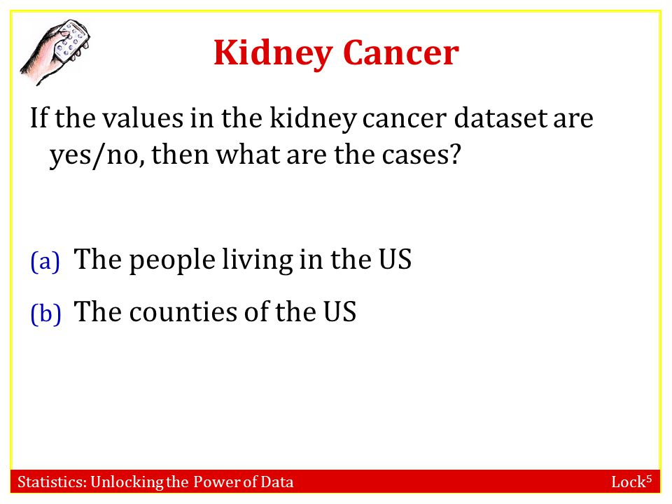 Statistics: Unlocking the Power of Data Lock 5 Kidney Cancer If the values in the kidney cancer dataset are yes/no, then what are the cases.