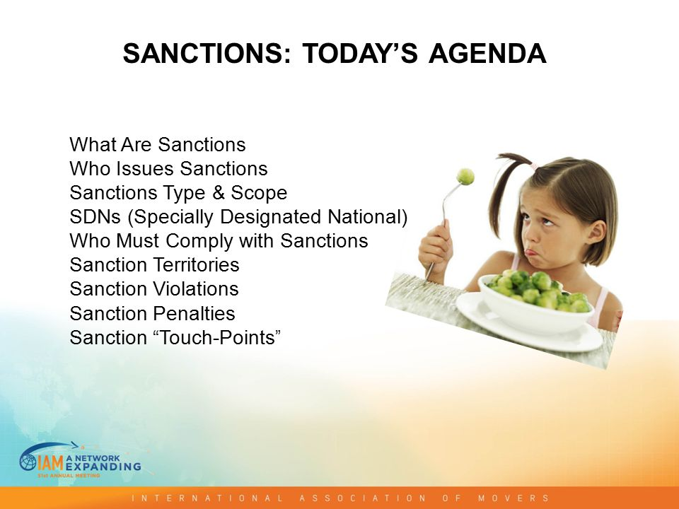 What Are Sanctions Who Issues Sanctions Sanctions Type & Scope SDNs (Specially Designated National) Who Must Comply with Sanctions Sanction Territories Sanction Violations Sanction Penalties Sanction Touch-Points SANCTIONS: TODAY'S AGENDA