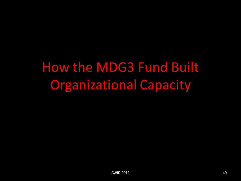 How the MDG3 Fund Built Organizational Capacity AWID 201240