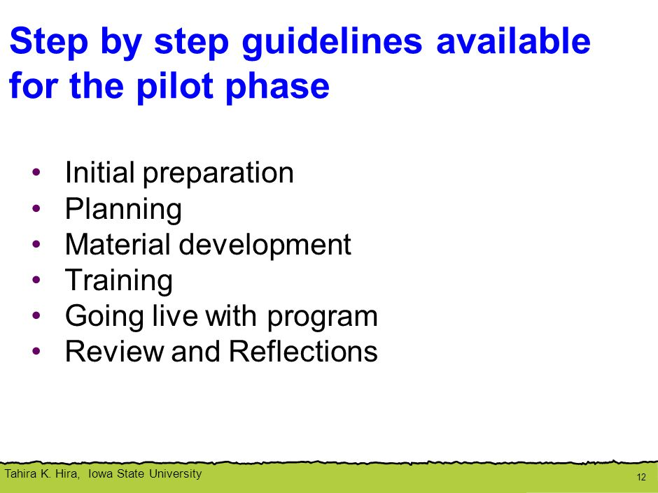 Tahira K. Hira, Iowa State University Step by step guidelines available for the pilot phase Initial preparation Planning Material development Training