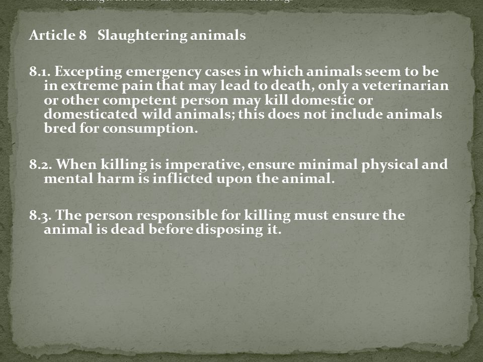 Article 8 Slaughtering animals 8.1.