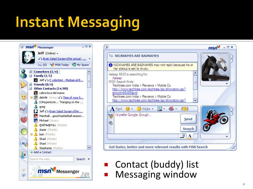  Contact (buddy) list  Messaging window 2
