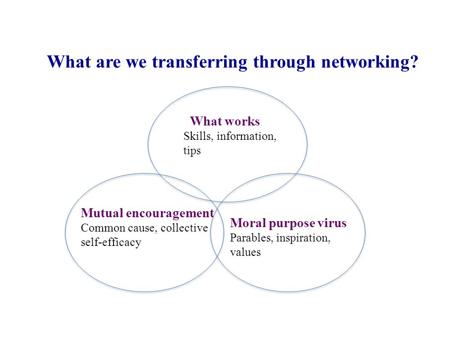 What works Skills, information, tips Mutual encouragement Common cause, collective self-efficacy Moral purpose virus Parables, inspiration, values What are we transferring through networking