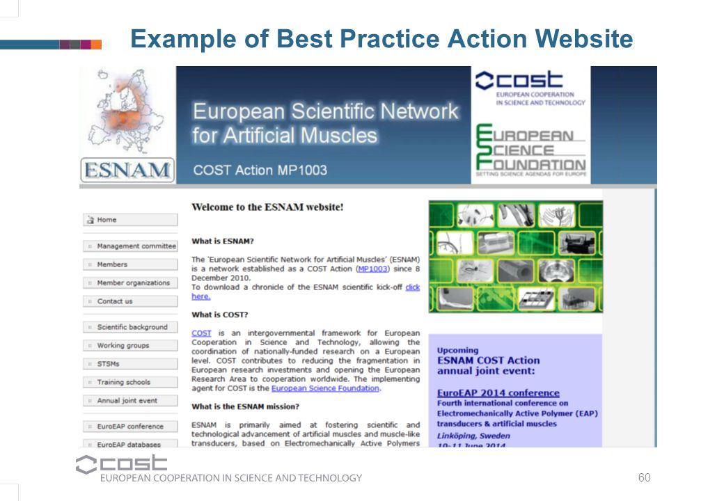 60 Example of Best Practice Action Website