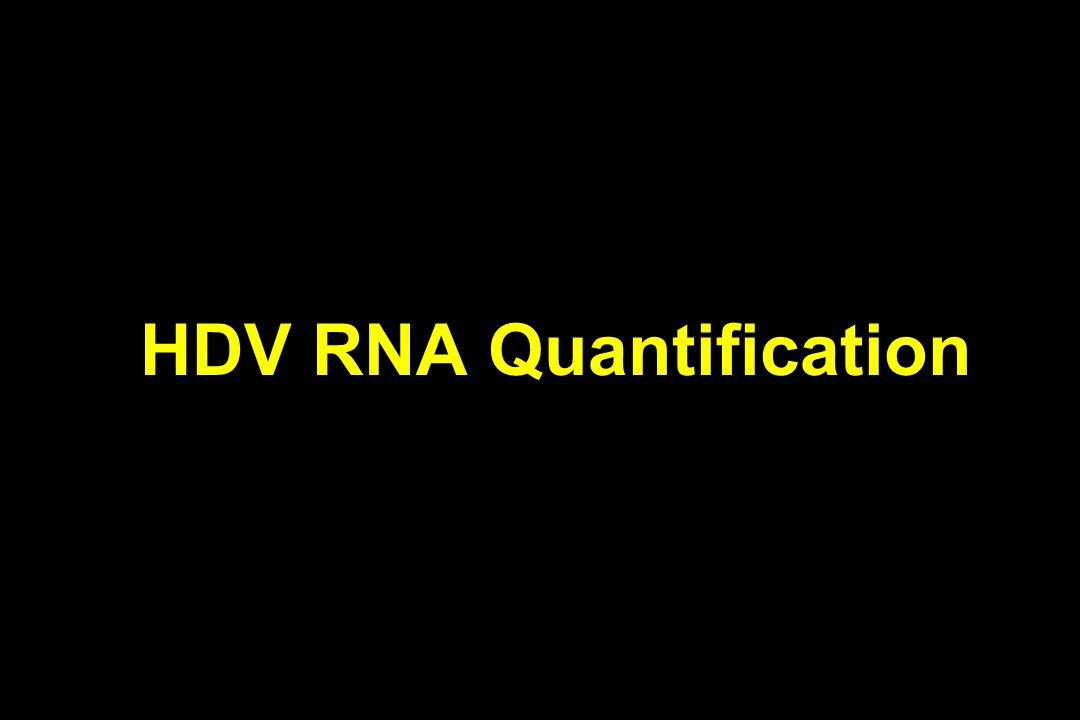 HDV RNA Quantification