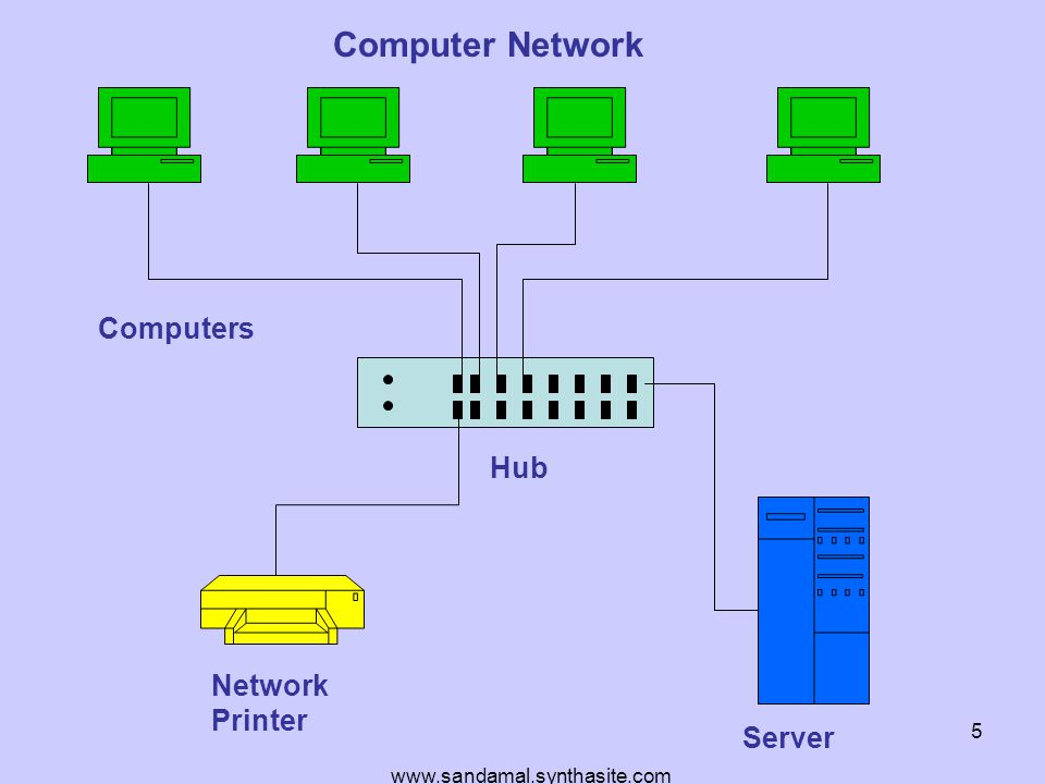 www.sandamal.synthasite.com 5 Network Printer Server Computers Computer Network Hub
