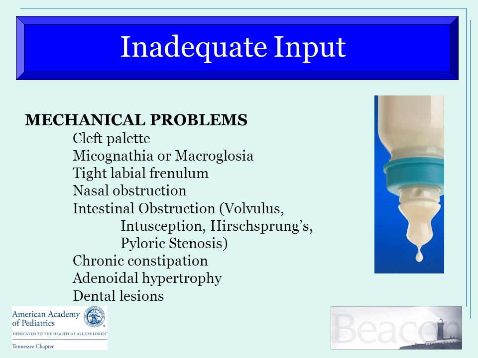 Inadequate Input MECHANICAL PROBLEMS Cleft palette Micognathia or Macroglosia Tight labial frenulum Nasal obstruction Intestinal Obstruction (Volvulus