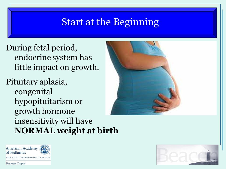 Start at the Beginning During fetal period, endocrine system has little impact on growth. Pituitary aplasia, congenital hypopituitarism or growth horm