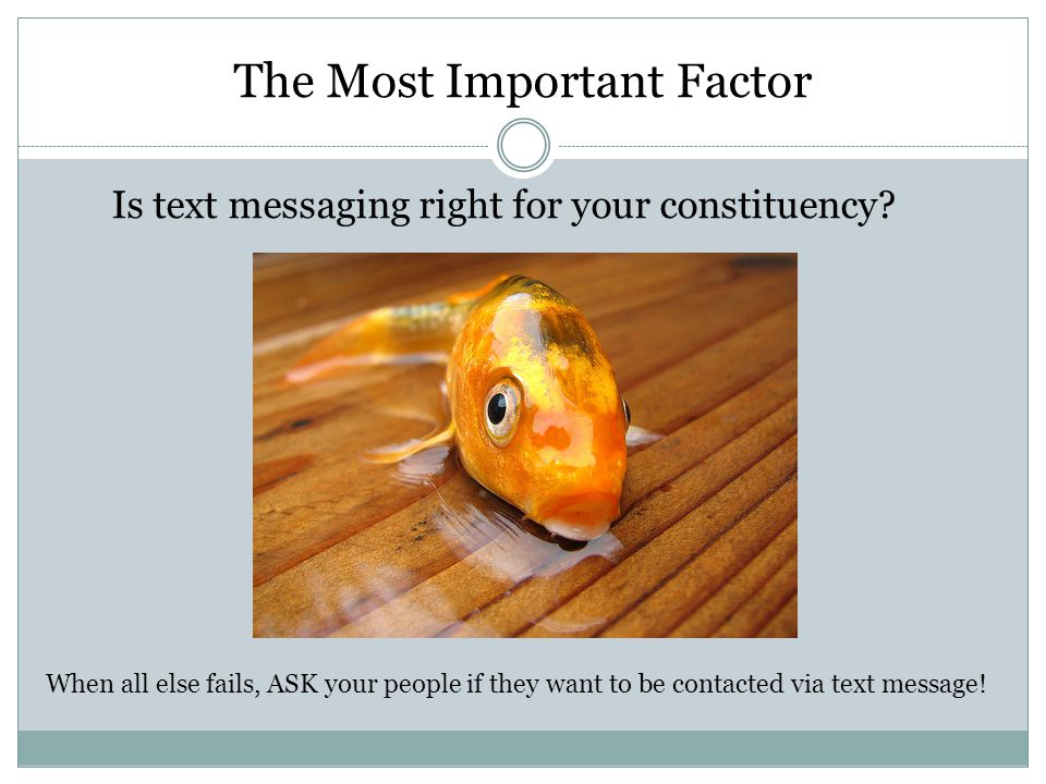 The Most Important Factor Is text messaging right for your constituency.