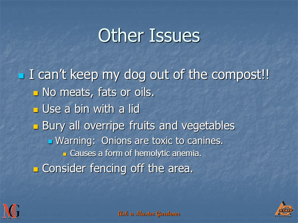 Ask a Master Gardener I can't keep my dog out of the compost!! I can't keep my dog out of the compost!! No meats, fats or oils. No meats, fats or oils