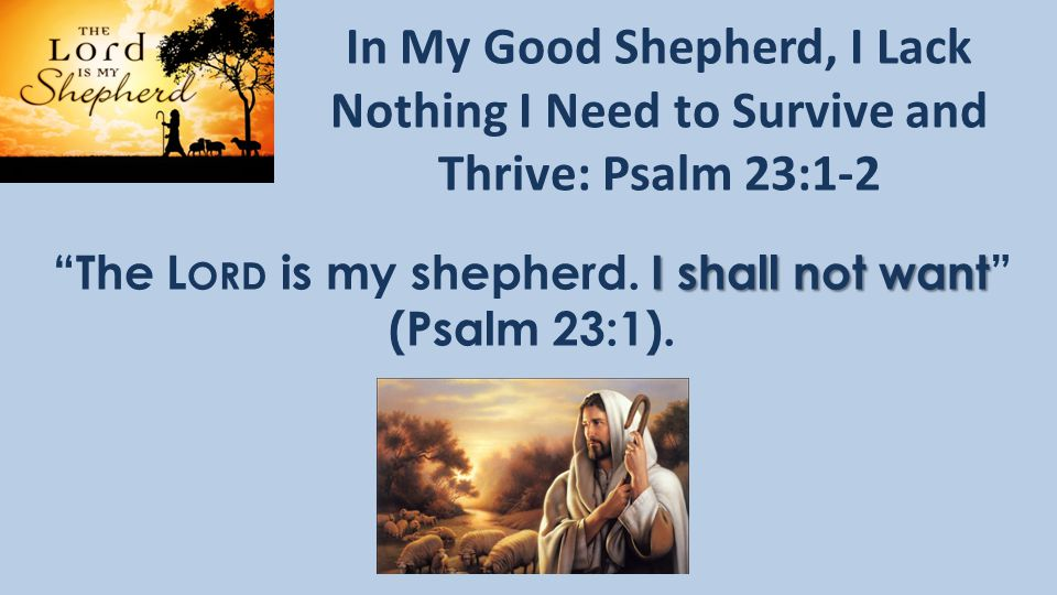 In My Good Shepherd, I Lack Nothing I Need to Survive and Thrive: Psalm 23:1-2 I shall not want The L ORD is my shepherd.
