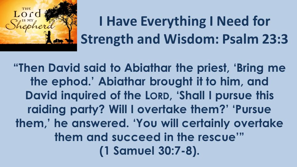 I Have Everything I Need for Strength and Wisdom: Psalm 23:3 Then David said to Abiathar the priest, 'Bring me the ephod.' Abiathar brought it to him, and David inquired of the L ORD, 'Shall I pursue this raiding party.