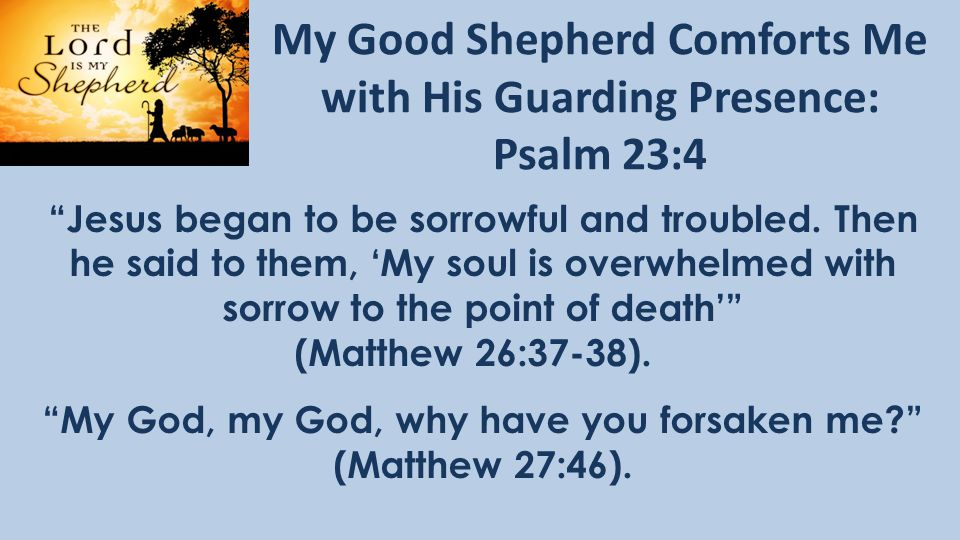 My Good Shepherd Comforts Me with His Guarding Presence: Psalm 23:4 Jesus began to be sorrowful and troubled.