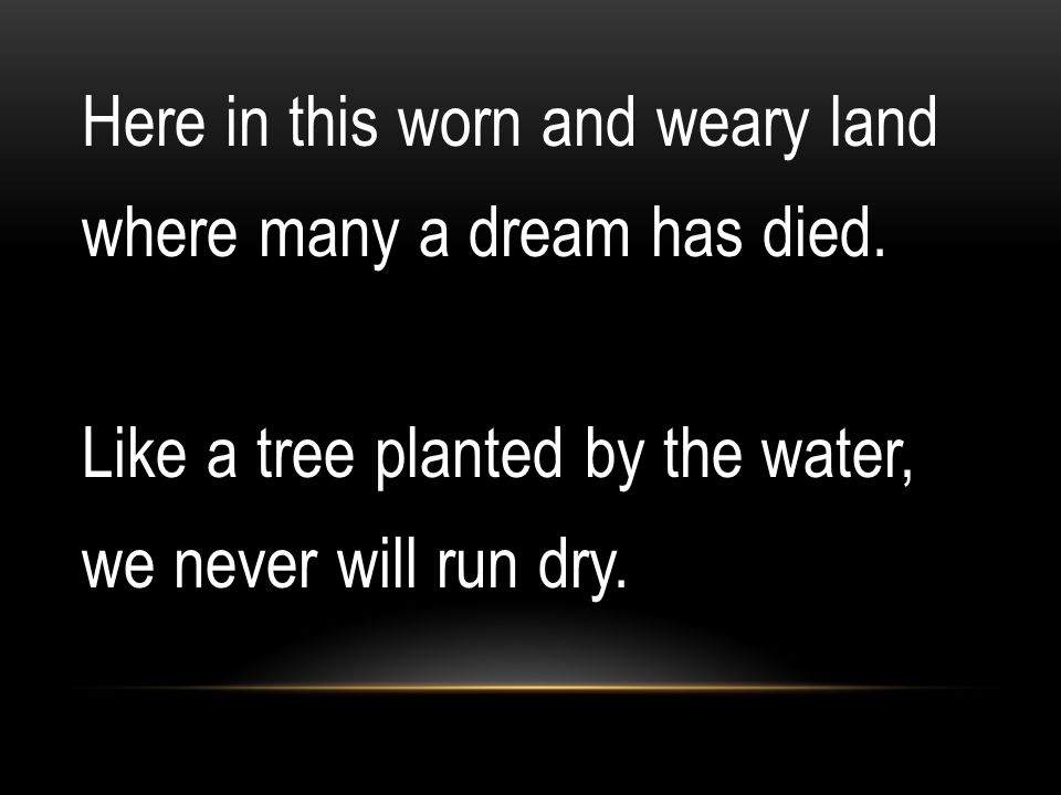 Here in this worn and weary land where many a dream has died. Like a tree planted by the water, we never will run dry.