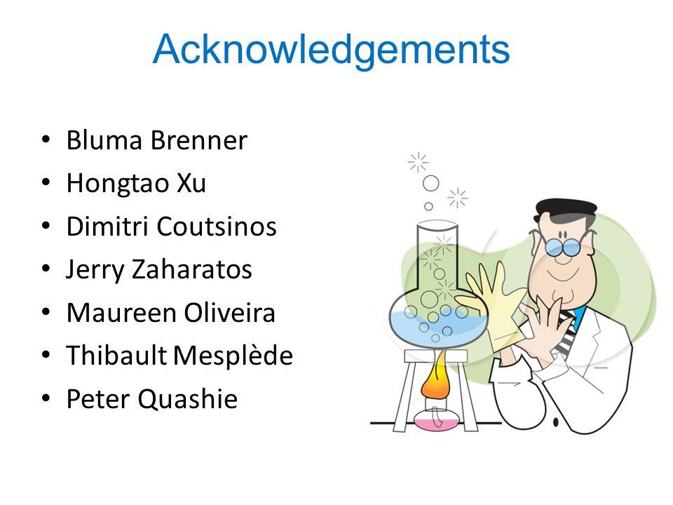 Bluma Brenner Hongtao Xu Dimitri Coutsinos Jerry Zaharatos Maureen Oliveira Thibault Mesplède Peter Quashie Acknowledgements