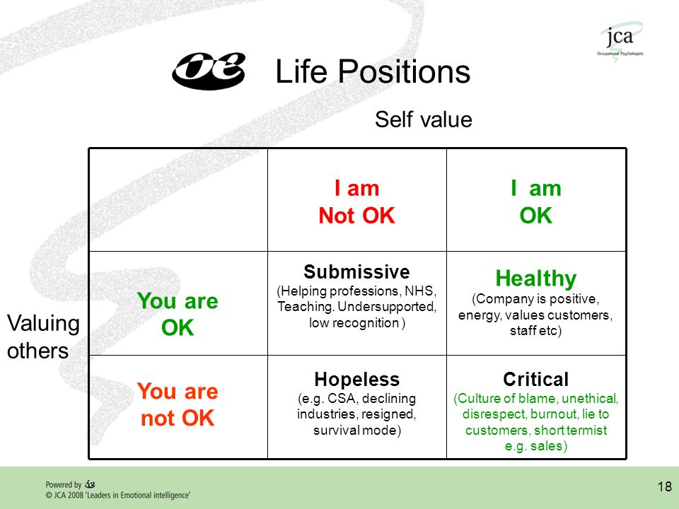 18 Life Positions Critical (Culture of blame, unethical, disrespect, burnout, lie to customers, short termist e.g.