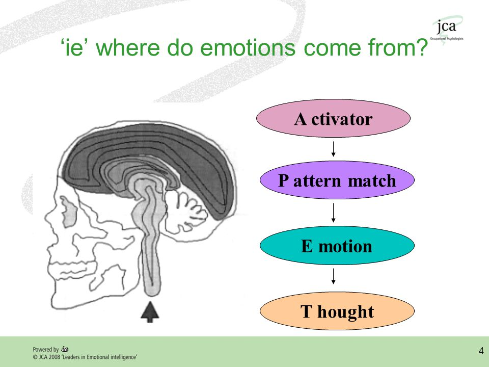 4 'ie' where do emotions come from A ctivator P attern match E motion T hought