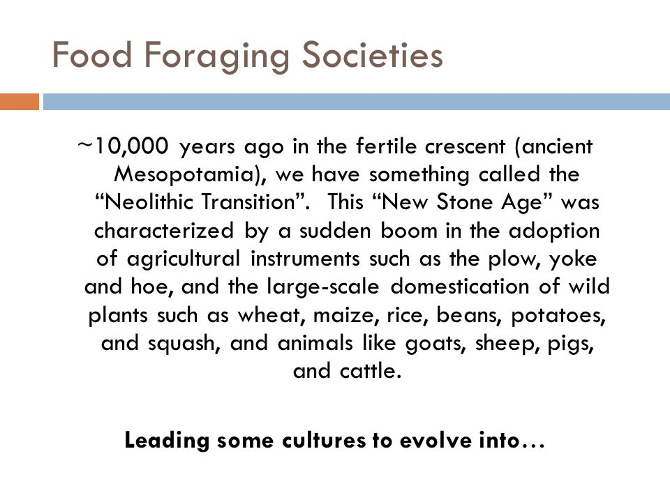 "Food Foraging Societies ~10,000 years ago in the fertile crescent (ancient Mesopotamia), we have something called the ""Neolithic Transition"". This ""Ne"
