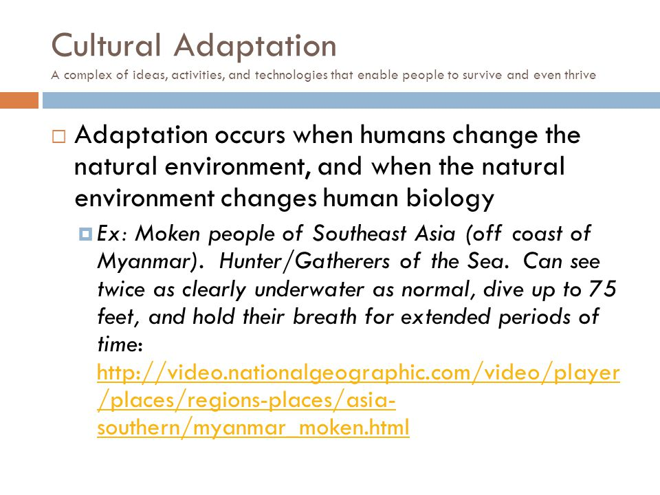 Cultural Adaptation A complex of ideas, activities, and technologies that enable people to survive and even thrive  Adaptation occurs when humans cha