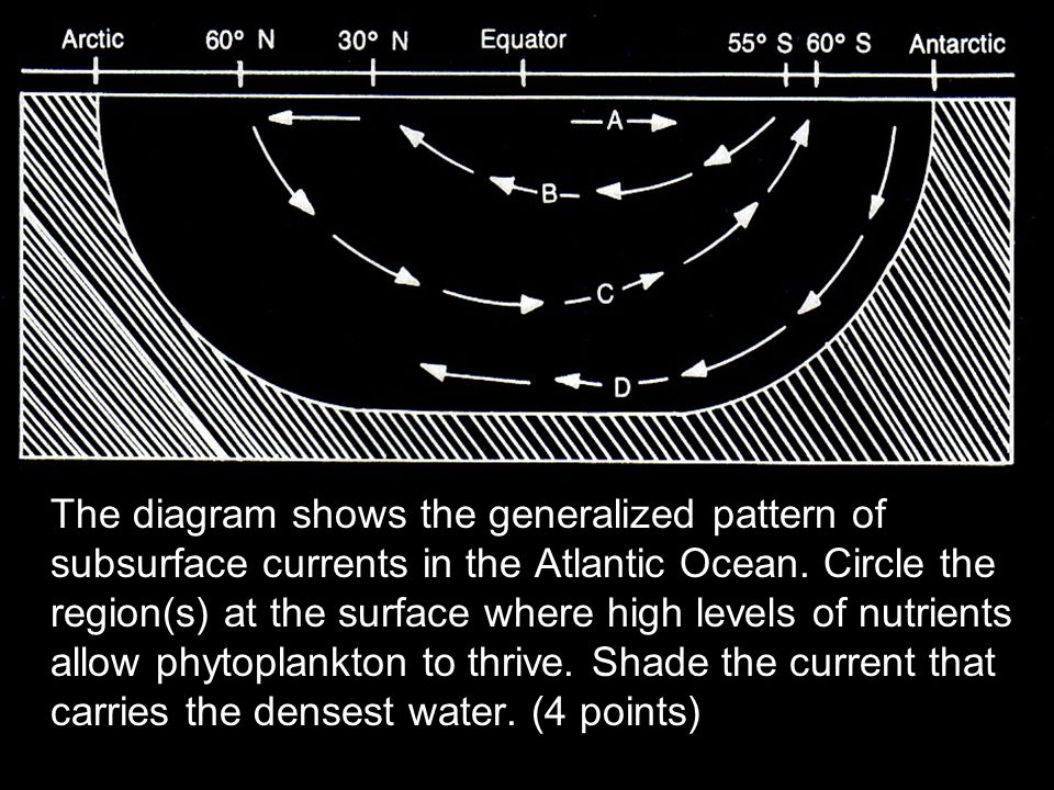 The diagram shows the generalized pattern of subsurface currents in the Atlantic Ocean. Circle the region(s) at the surface where high levels of nutri